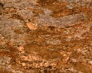 Technical detail: Crema Bordeaux Light Brazilian polished natural, granite