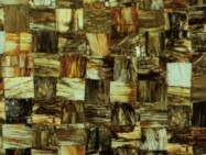 Technical detail: JURASSIC PETRIFIED WOOD German polished natural, semi precious stone