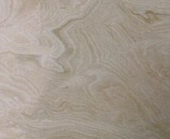 Technical detail: CORAL BEACH Pakistan polished natural, travertine