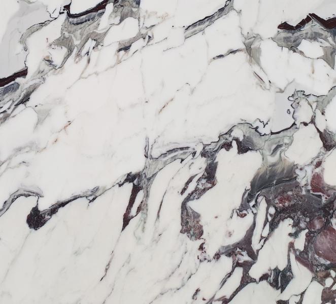 BRECCIA CAPRAIA stone