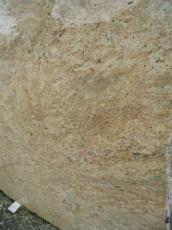 Supply polished slabs 0.8 cm in natural granite MADURAI GOLD EDM25111. Detail image pictures