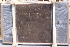 Supply polished slabs 0.8 cm in natural marble MARRON FOSSIL E-14694. Detail image pictures