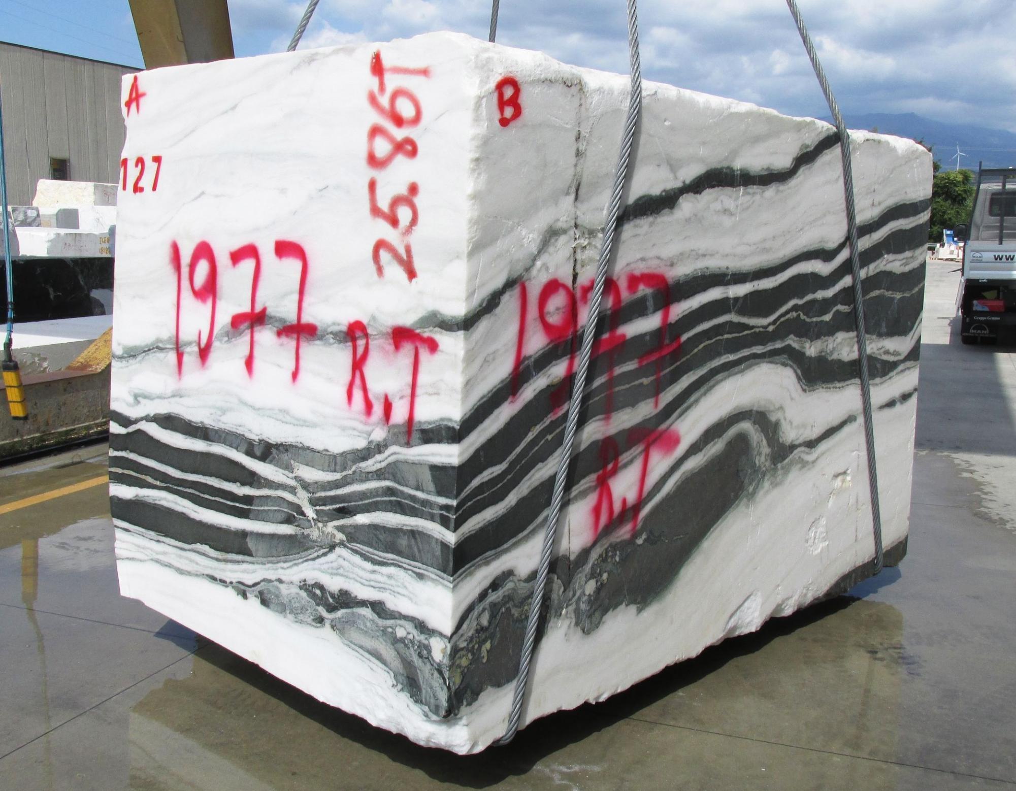 PANDA Supply Veneto (Italy) rough blocks 1771M , Face A natural marble