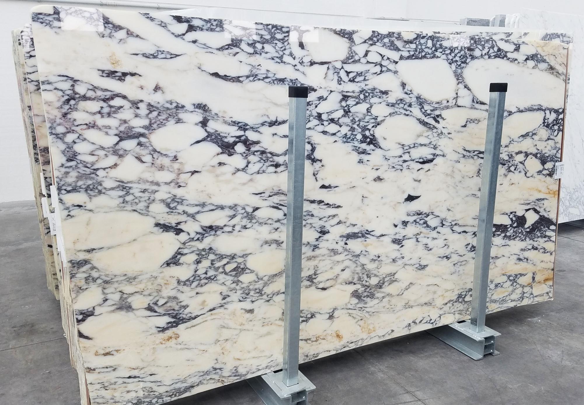 CALACATTA MONET Supply Veneto (Italy) polished slabs 1371 , Slab #41 natural marble