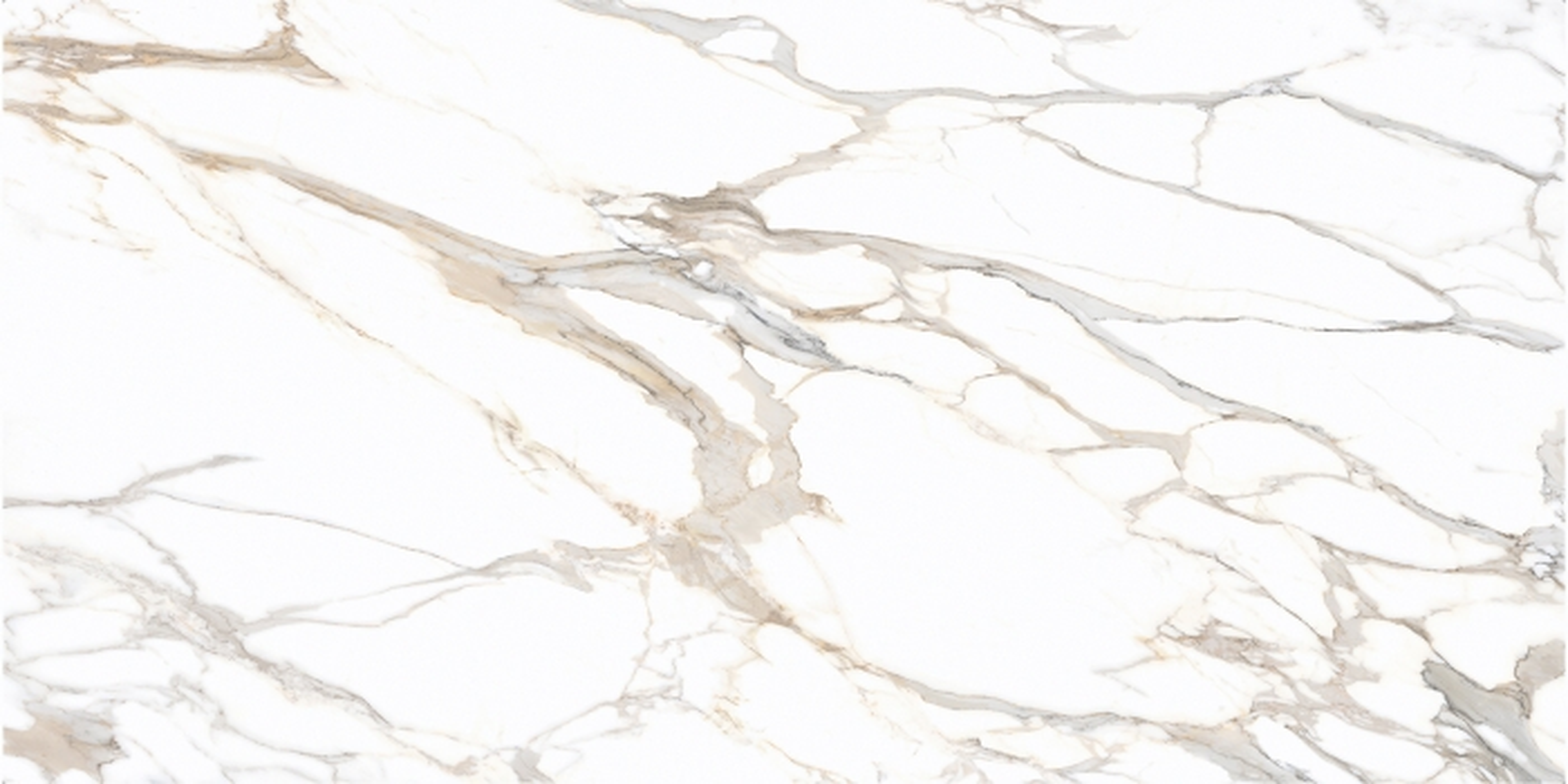 CALACATTA SUPREME Supply California (United States of America) polished slabs CSP , Std Size heat resistant porcelain stoneware