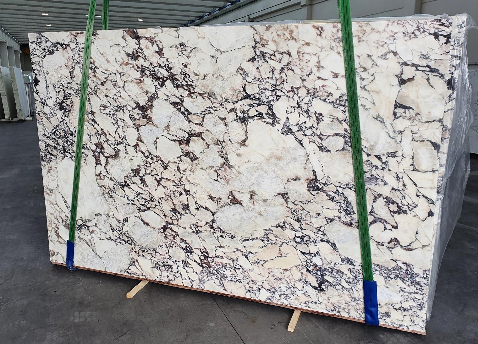 CALACATTA VIOLA Supply Veneto (Italy) polished slabs 1291 , Slab #08-3 natural marble