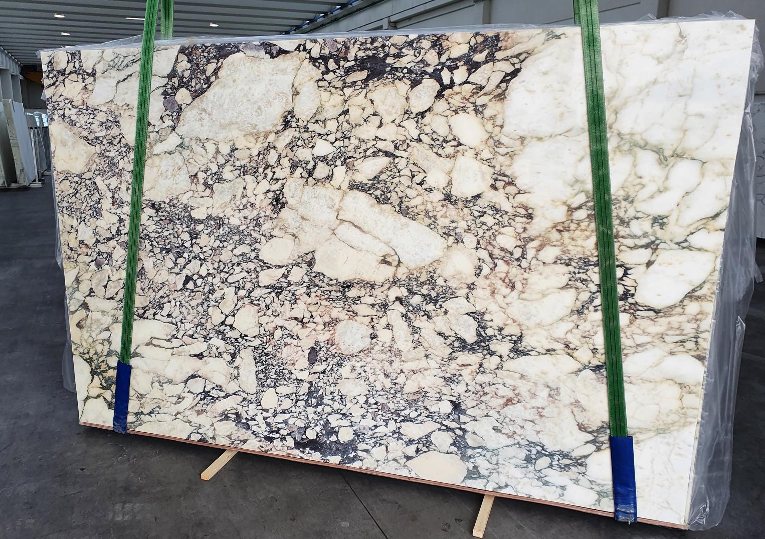 CALACATTA VIOLA Supply Veneto (Italy) polished slabs 1291 , Slab #42 natural marble