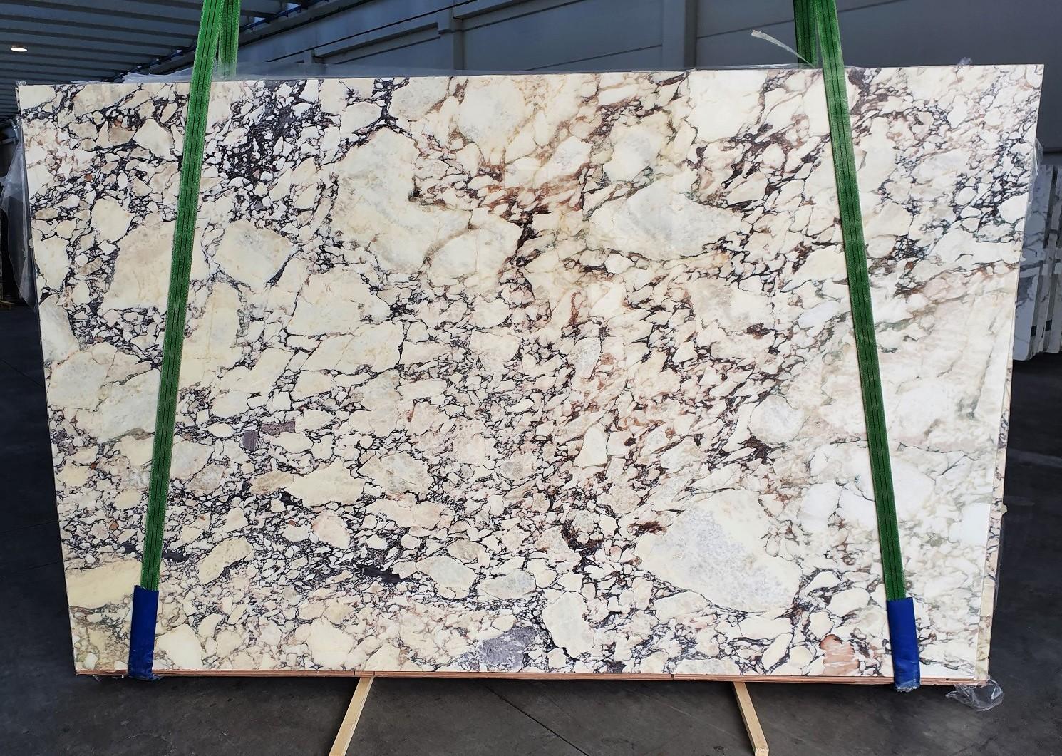 CALACATTA VIOLA Supply Veneto (Italy) polished slabs 1291 , Slab #10 natural marble