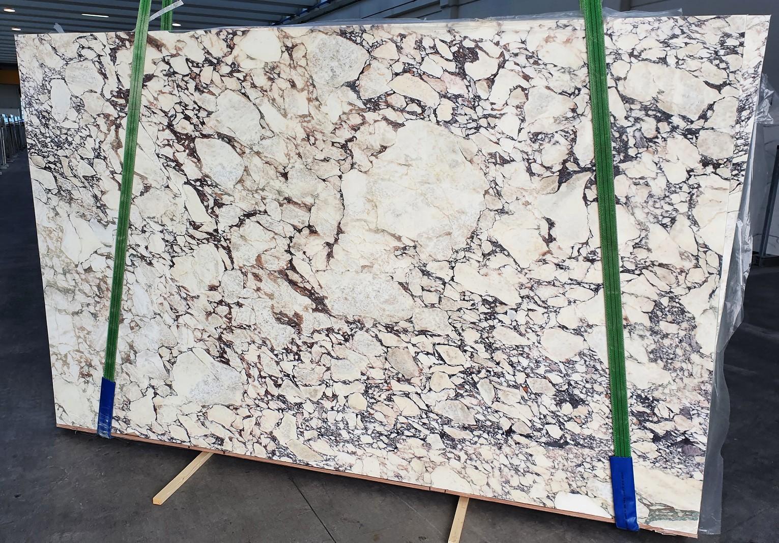 CALACATTA VIOLA Supply Veneto (Italy) polished slabs 1291 , Slab #01 natural marble