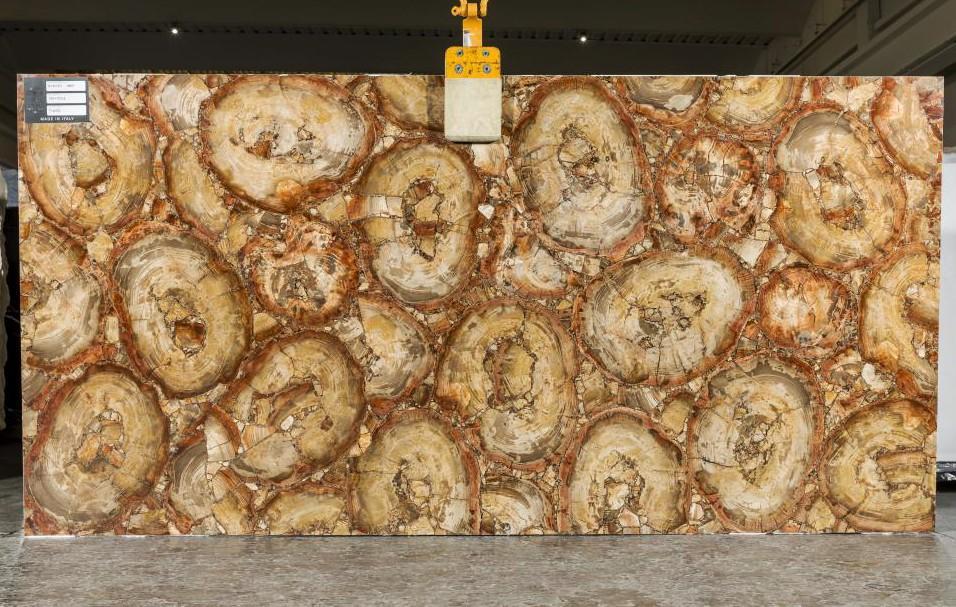 PETRIFIED WOOD BROWN Supply Veneto (Italy) polished slabs TL0142 , SL2CM natural semi precious stone
