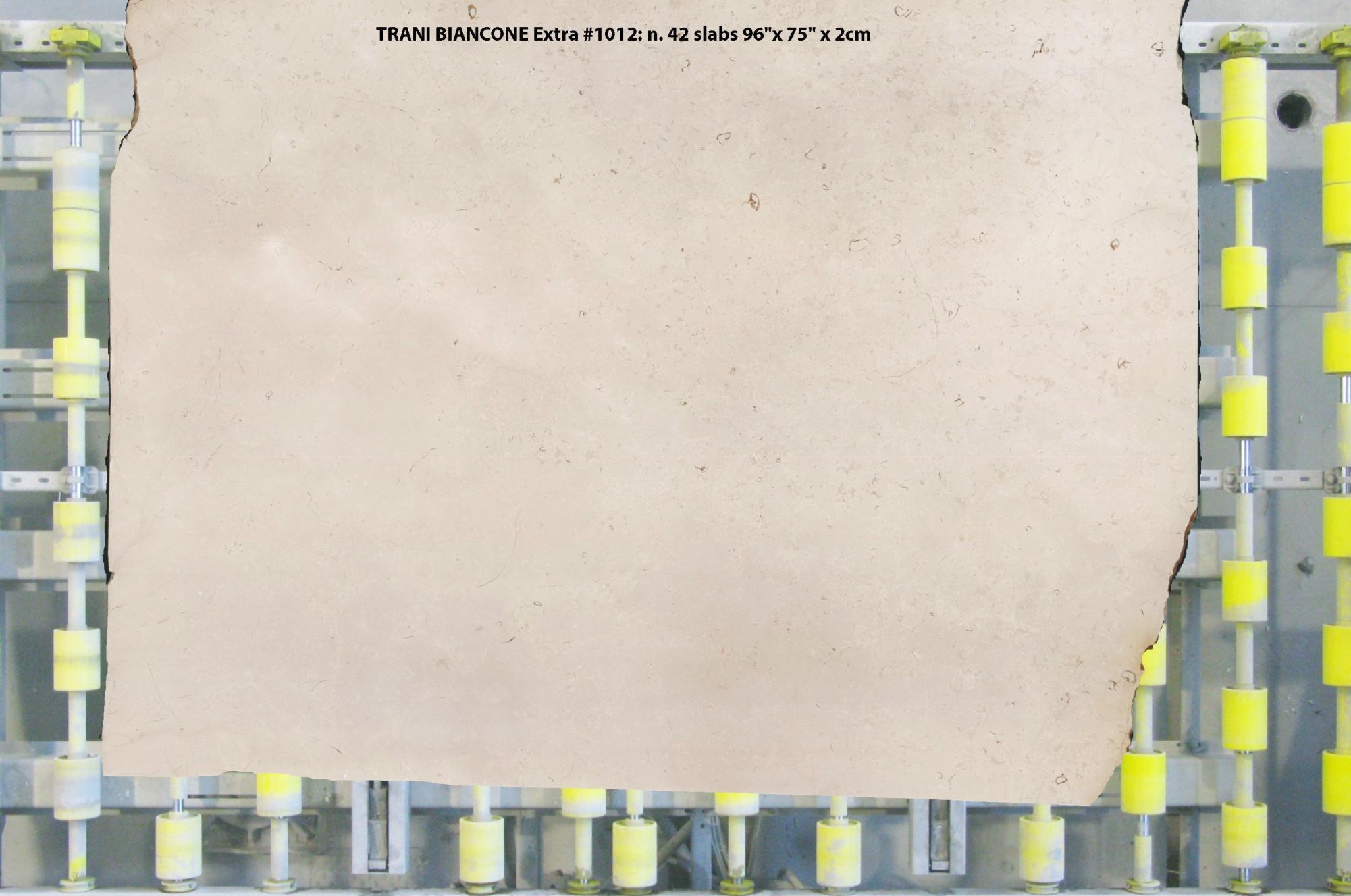 TRANI BIANCONE EXTRA polished slabs 1012 , Slab #01 natural marble