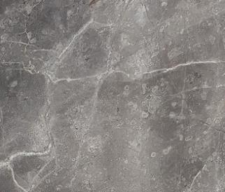 Technical detail: FIOR DI BOSCO Italian polished natural, marble