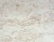 Technical detail: WHITE CRABAPPLE Chinese polished natural, marble