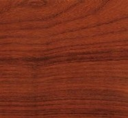 Technical detail: Padauk Congo polished essence, Padouk