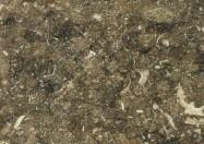 Technical detail: RASOTICA Croatian polished natural, limestone
