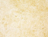 Technical detail: VILHONNEUR BANC 8-9 French honed natural, sandstone
