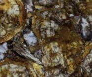 Technical detail: PETRIFIED WOOD Indonesian polished natural, semi precious stone