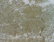 Technical detail: LUX SAN MARCO Italian bushhammered natural, marble