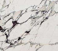 Technical detail: BRECCIA CAPRAIA CLASSICA Italian polished natural, marble