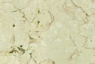 Technical detail: TRANI FIORITO Italian polished natural, marble