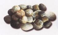Technical detail: MISTO GRIGIO Italian tumbled natural, marble