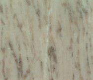 Technical detail: ATENEA Spanish polished natural, marble