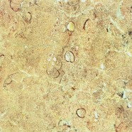 Technical detail: ROSA ZARCI Spanish polished natural, marble