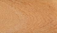 Technical detail: GREVILLEA United States of America honed essence, oak