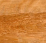Technical detail: Birch Curly United States of America polished essence, birch